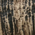Black Stained Bamboo Texture
