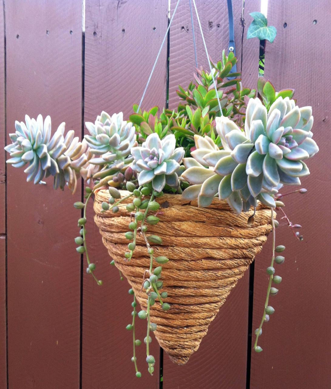 Rope Coil Cone Hanging Planter