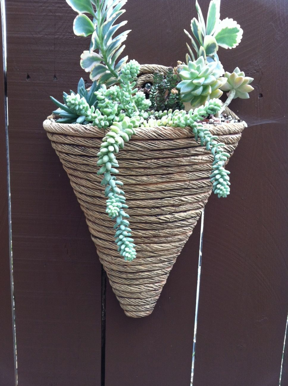 Hand Coiled Cone Wall Planter